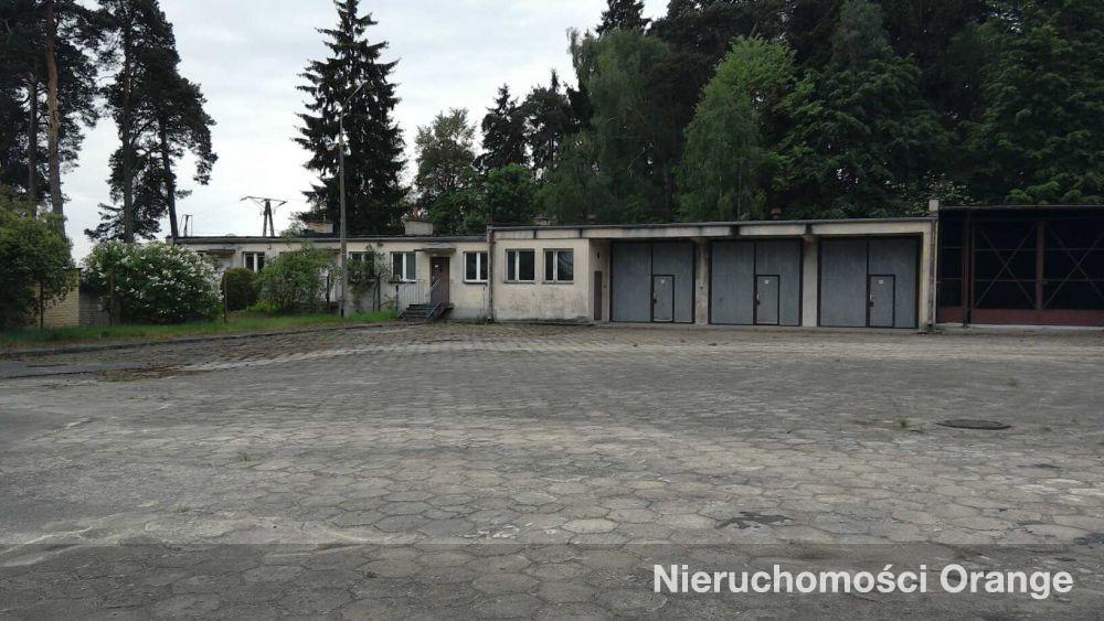 Lokal użytkowy na sprzedaż Szubin-Wieś  1196m2 Foto 8