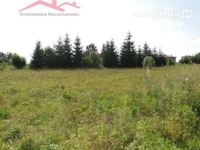 Działka rolna na sprzedaż Korczyna  1300m2 Foto 2