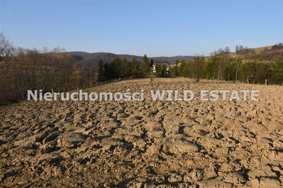 Działka rolna na sprzedaż Lesko, Średnia Wieś  3561m2 Foto 3