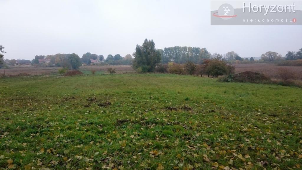 Działka rolna na sprzedaż Kołbaskowo  837m2 Foto 4