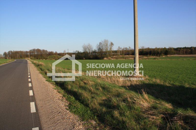 Działka siedliskowa na sprzedaż Stara Kiszewa  8767m2 Foto 4