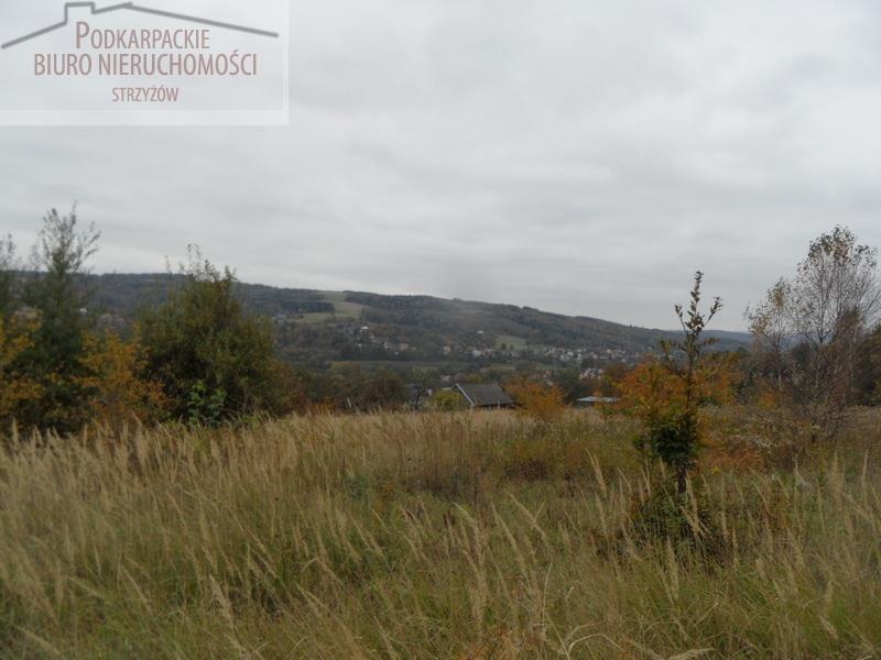 Działka budowlana na sprzedaż Glinik Zaborowski  5580m2 Foto 2