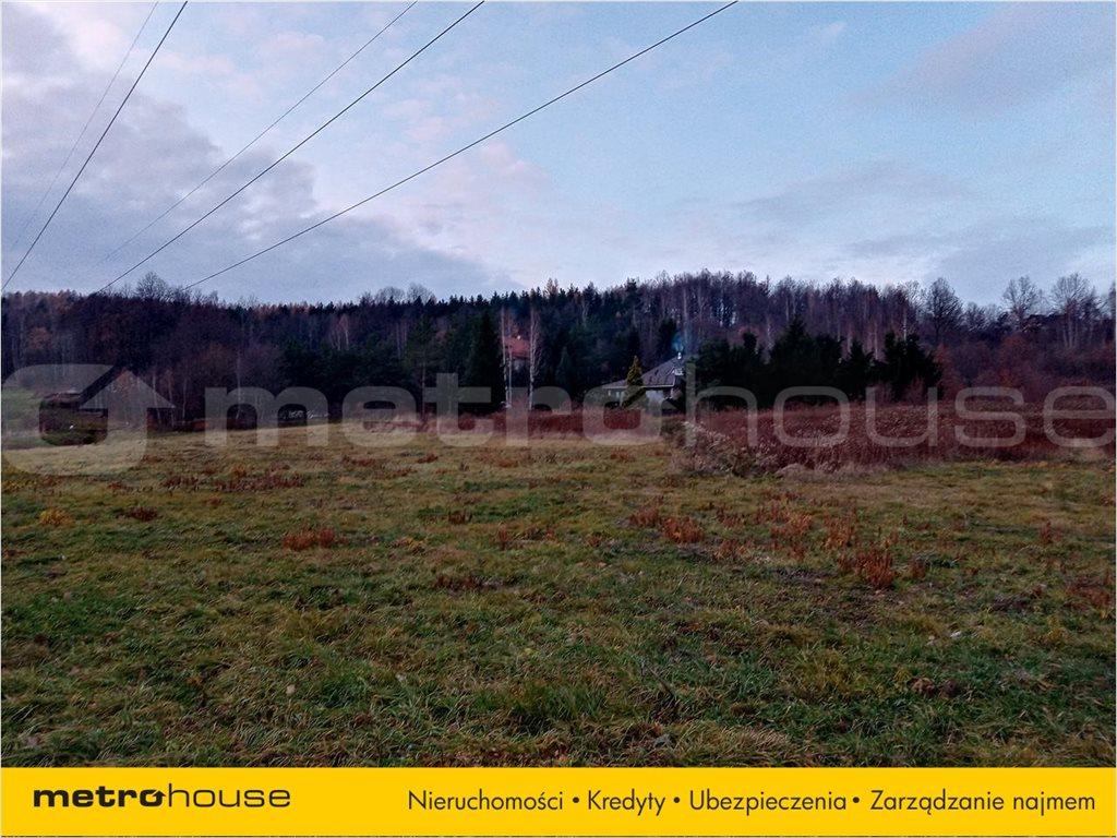 Działka rolna na sprzedaż Wojcieszyce, Stara Kamienica  14999m2 Foto 2