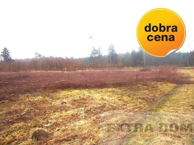 Działka budowlana na sprzedaż Nowogard  665m2 Foto 3