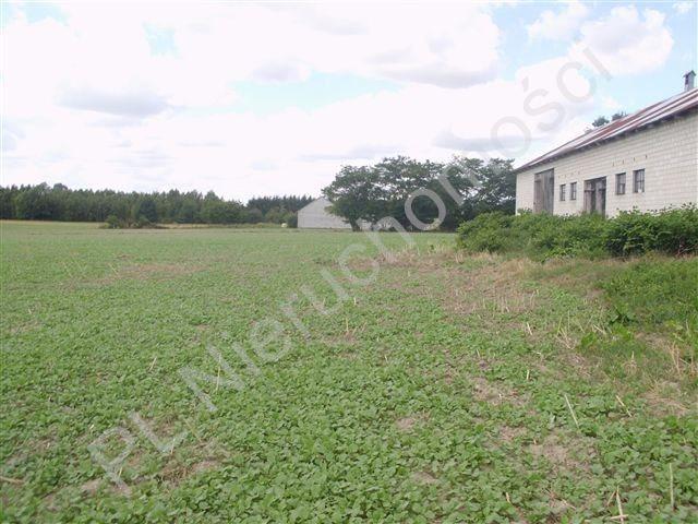 Działka rolna na sprzedaż Pasikonie  80347m2 Foto 5