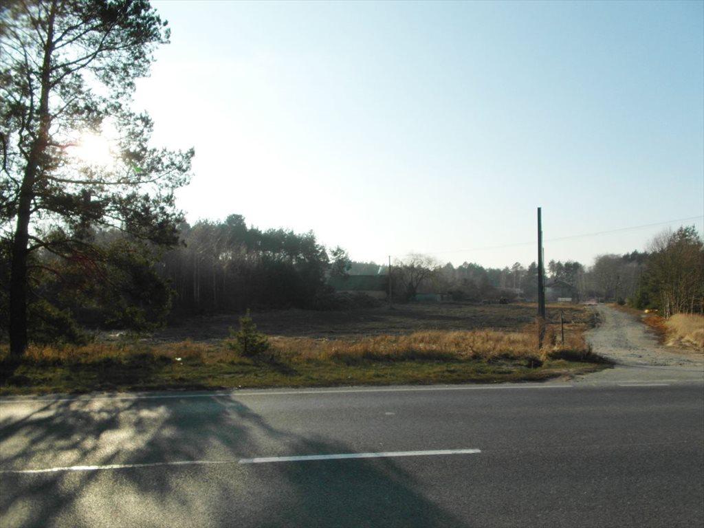 Działka budowlana na sprzedaż Grudziądz  4000m2 Foto 5