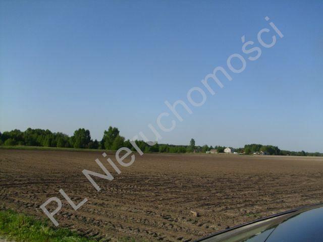 Działka budowlana na sprzedaż Szamoty  1648m2 Foto 6