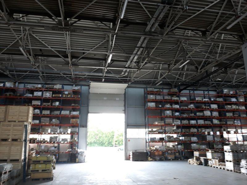 Lokal użytkowy na wynajem Hala - MAGAZYN - produkcja. 3648 m2 - RZESZÓW  3648m2 Foto 4