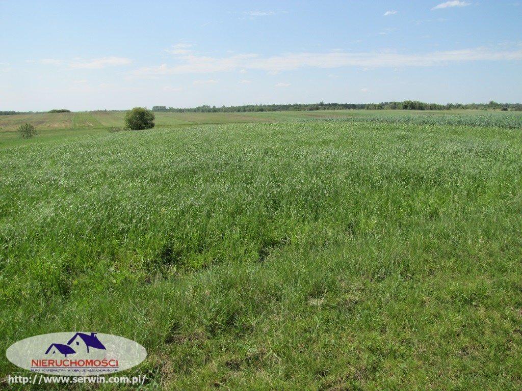 Działka rolna na sprzedaż Piasek Mały  17600m2 Foto 2