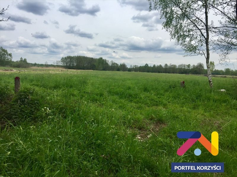 Działka rolna na sprzedaż Świdnica, Łochowo  42400m2 Foto 5