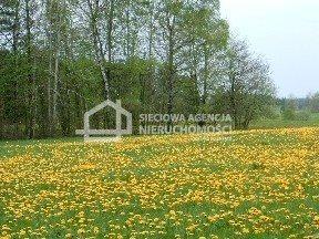 Działka budowlana na sprzedaż Donimierz  4980m2 Foto 1