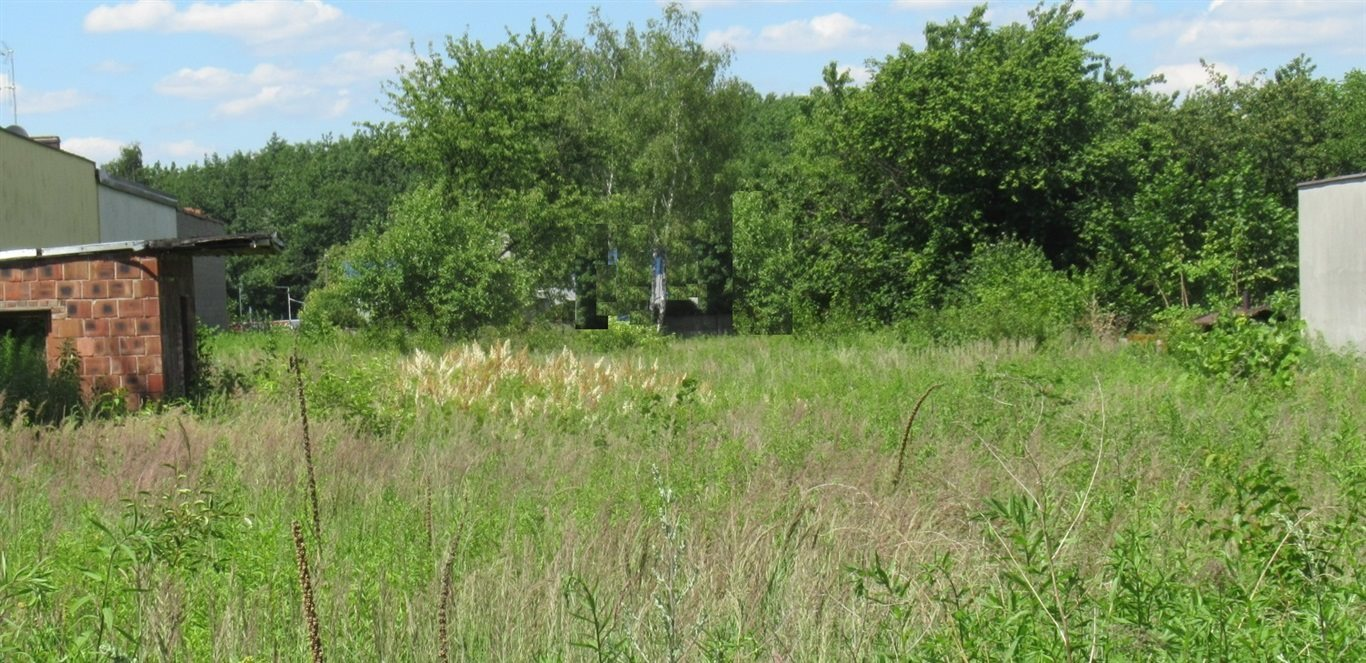 Działka budowlana na sprzedaż Częstochowa, Lisiniec  2694m2 Foto 2