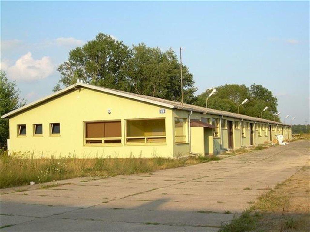 Lokal użytkowy na sprzedaż Wieliszew, Okolice Zegrza  982m2 Foto 13