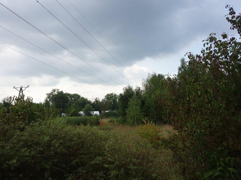 Działka przemysłowo-handlowa na sprzedaż Piaseczno  7541m2 Foto 6