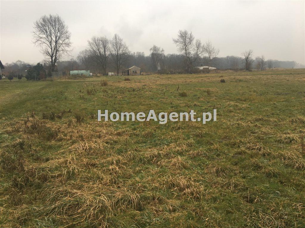 Działka rolna na sprzedaż Mikołów, Paniowy, ok. Rybołówka  6519m2 Foto 5