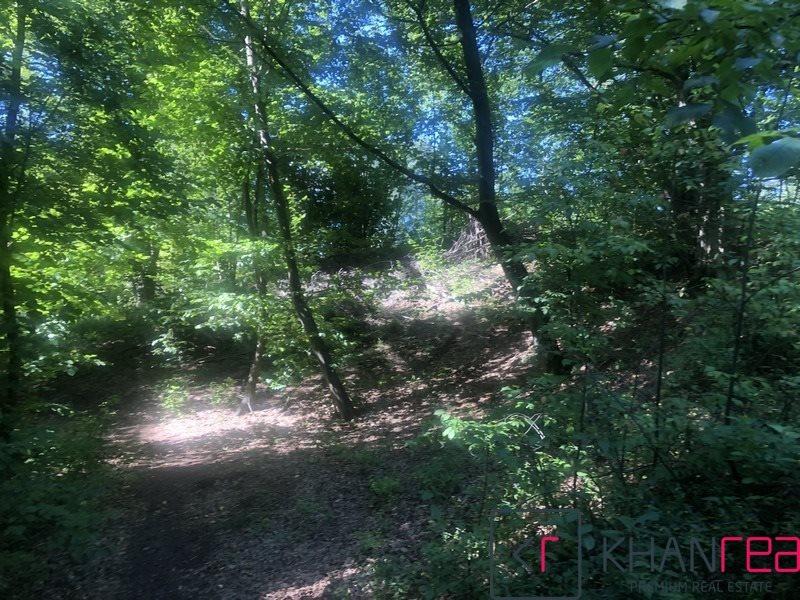 Działka leśna na sprzedaż Sobików  15000m2 Foto 4