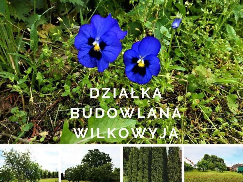 Działka budowlana na sprzedaż Kłecko, Kłecko-Kolonia  1273m2 Foto 1