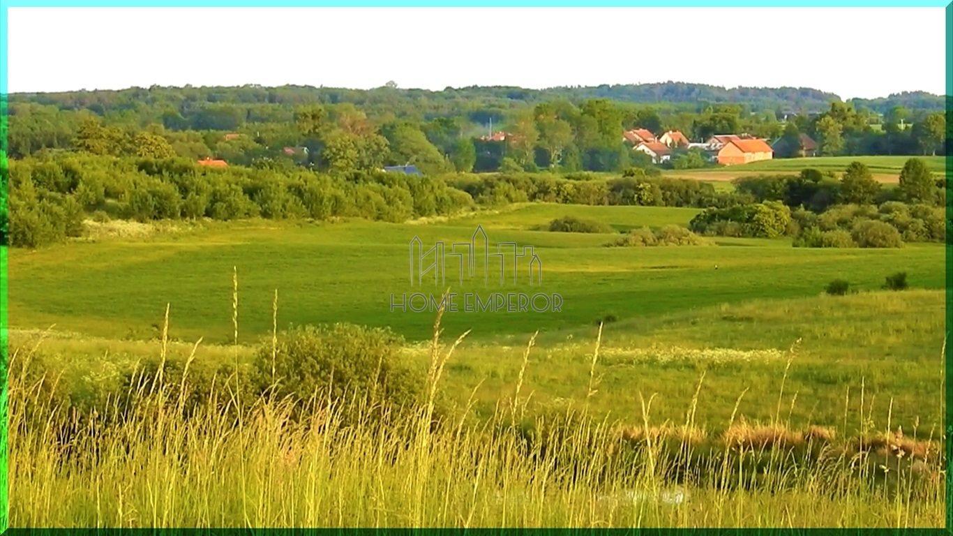 Działka rolna na sprzedaż Gołogóra  3004m2 Foto 3