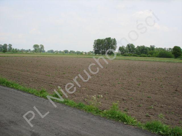 Działka rolna na sprzedaż Holendry Baranowskie  15700m2 Foto 3
