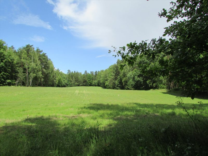 Działka rolna na sprzedaż Łagówek  16100m2 Foto 1