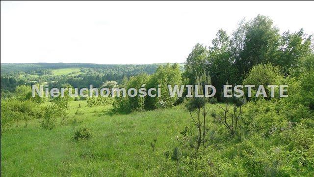 Działka rolna na sprzedaż Ustrzyki Dolne, Jureczkowa  22700m2 Foto 7