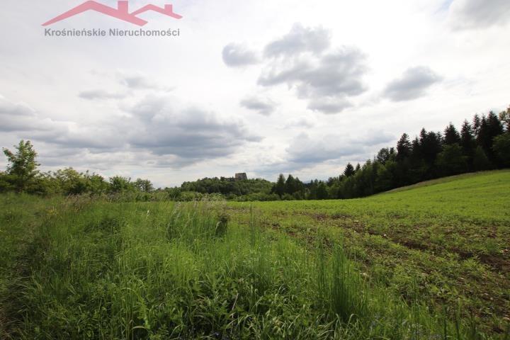 Działka rolna na sprzedaż Korczyna  3000m2 Foto 4