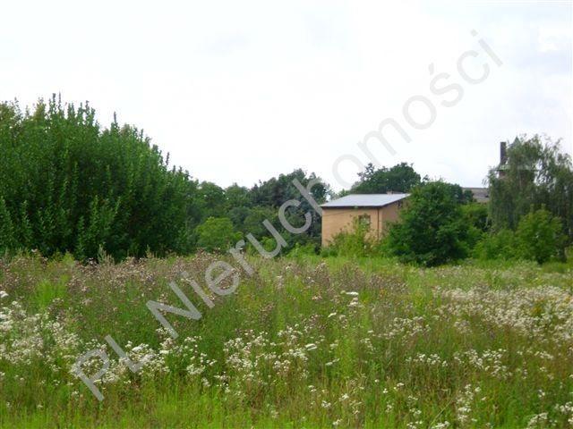 Działka budowlana na sprzedaż Pruszków  594m2 Foto 2