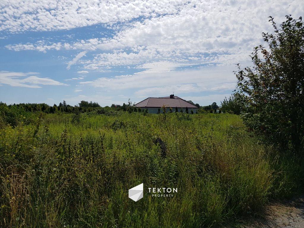Działka rolna na sprzedaż Mokronos Dolny, Morelowa  3000m2 Foto 8