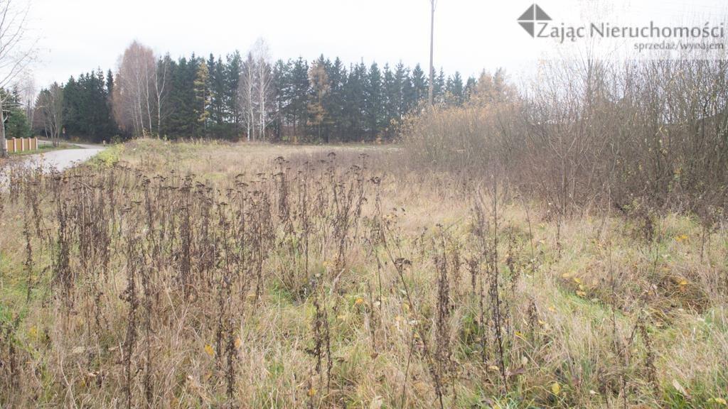 Działka rolna na sprzedaż Dywity  3000m2 Foto 1
