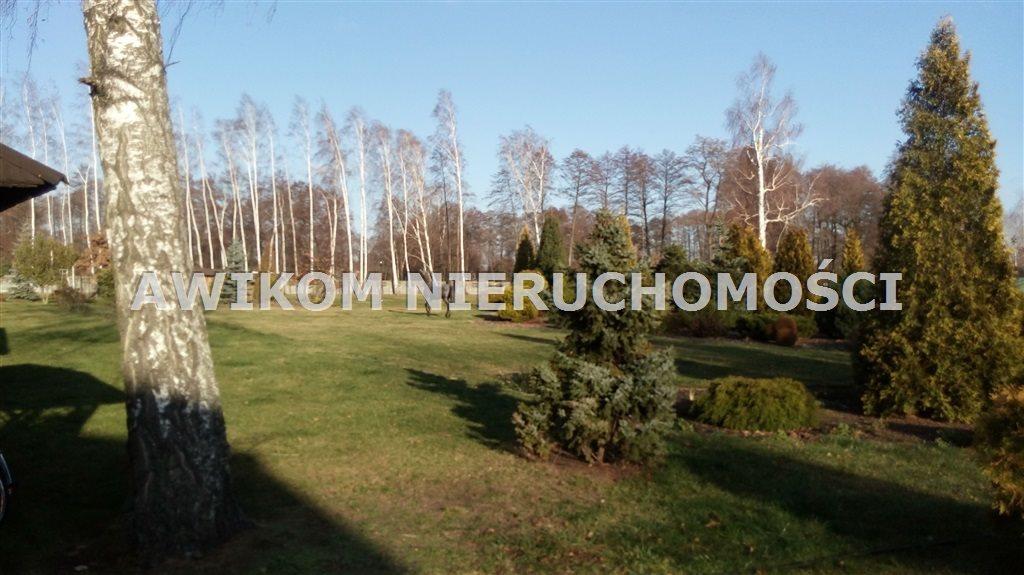Lokal użytkowy na sprzedaż Michałów  600m2 Foto 5