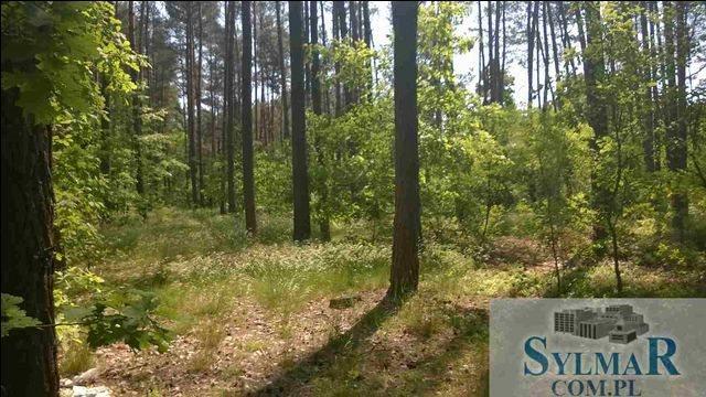 Działka leśna na sprzedaż Góra Kalwaria, Ługówka, Leśna  10488m2 Foto 1