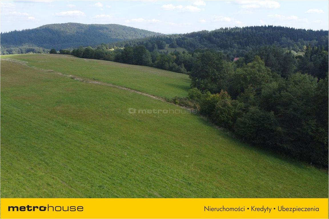 Działka rolna na sprzedaż Weremień, Lesko  9200m2 Foto 4