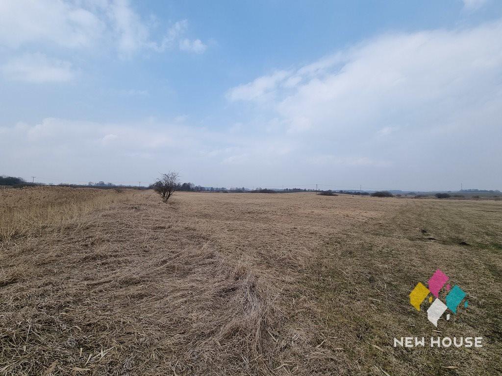 Działka rolna na sprzedaż Silice  4042m2 Foto 5