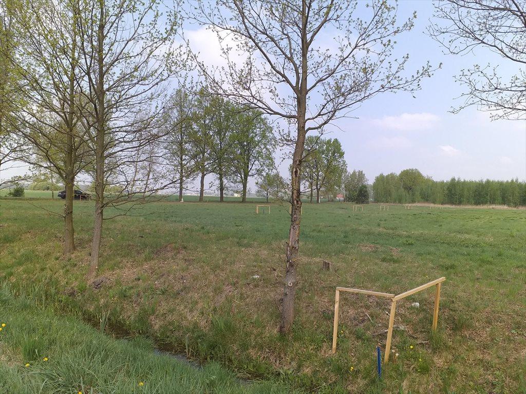 Działka budowlana na sprzedaż Sochaczew, Okopy  1000m2 Foto 6