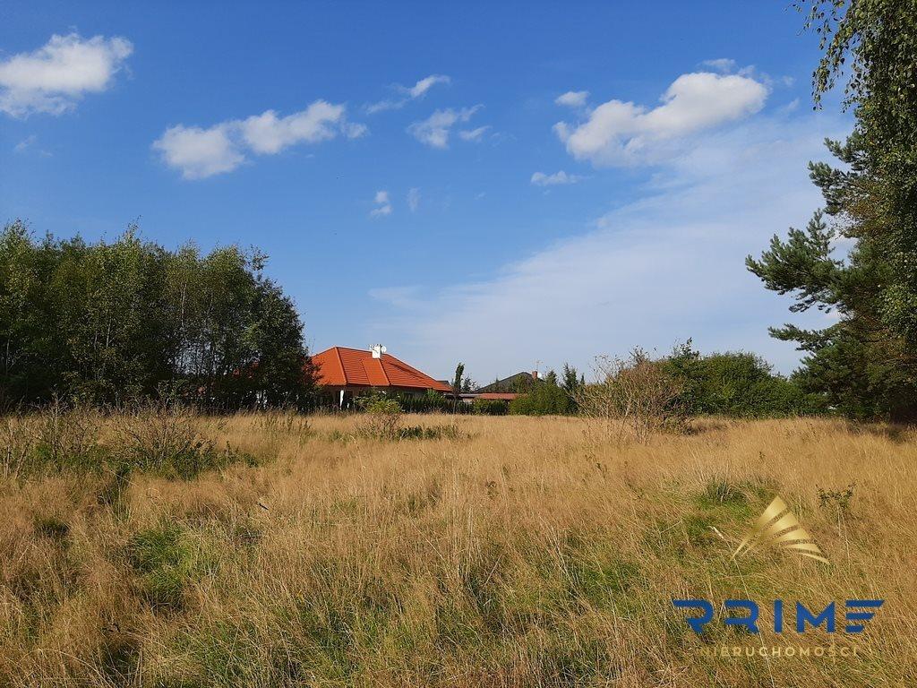 Działka budowlana na sprzedaż Grabno  1113m2 Foto 1