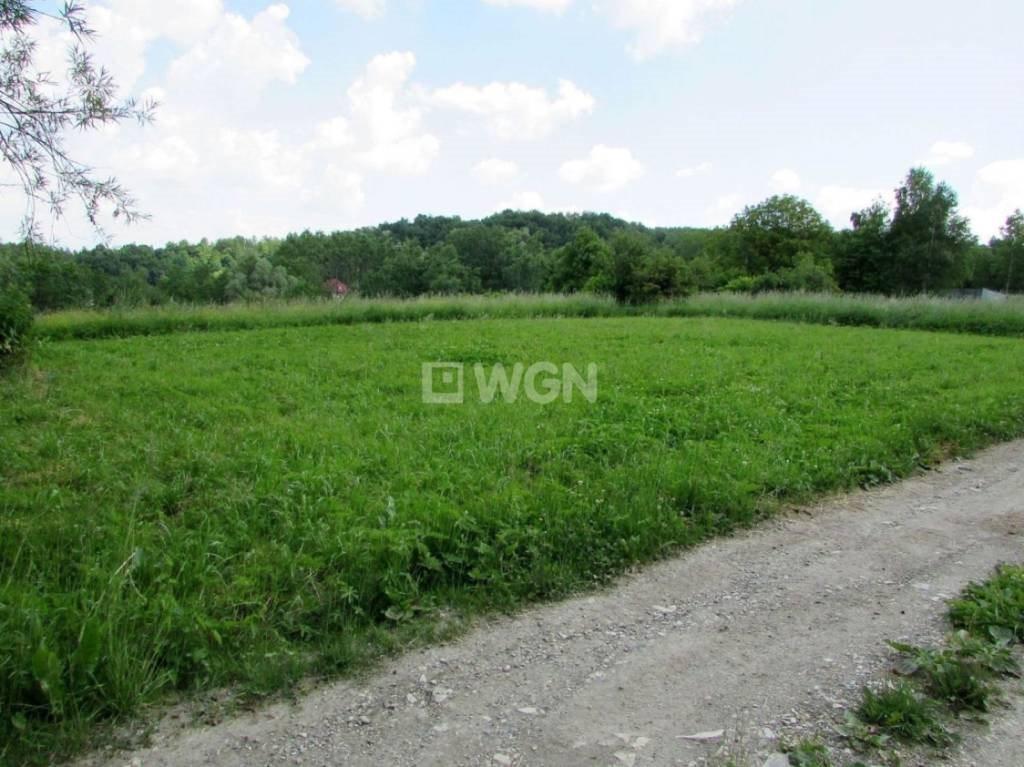 Działka budowlana na sprzedaż Nowy Borek, Nowy Borek, Nowy Borek  7836m2 Foto 7
