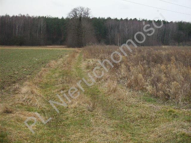 Działka rolna na sprzedaż Mszczonów  28100m2 Foto 4
