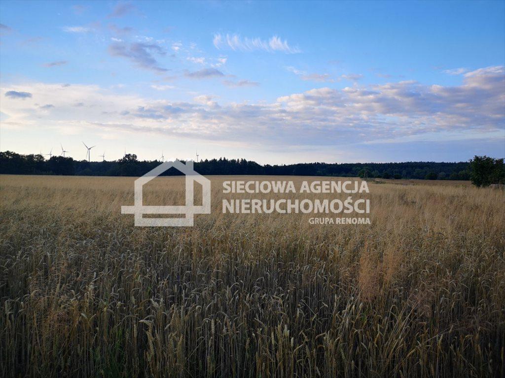 Działka rolna na sprzedaż Białogarda  148300m2 Foto 11
