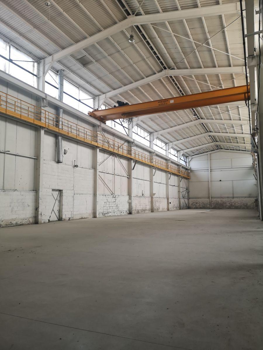 Lokal użytkowy na sprzedaż Mysłowice  1300m2 Foto 4