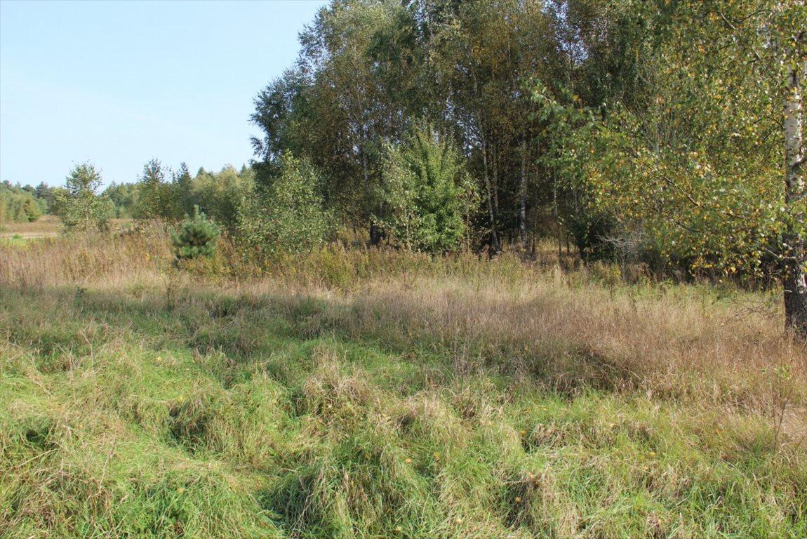 Działka rolna na sprzedaż Salinko  17808m2 Foto 7
