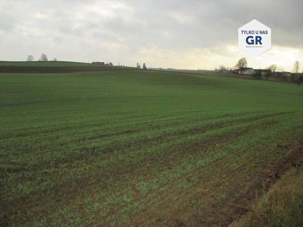 Działka rolna na sprzedaż Wielki Klincz  10000m2 Foto 1