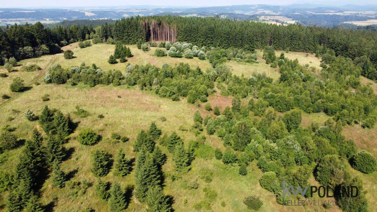 Działka rolna na sprzedaż Kudowa-Zdrój, Pstrążna  14309m2 Foto 2