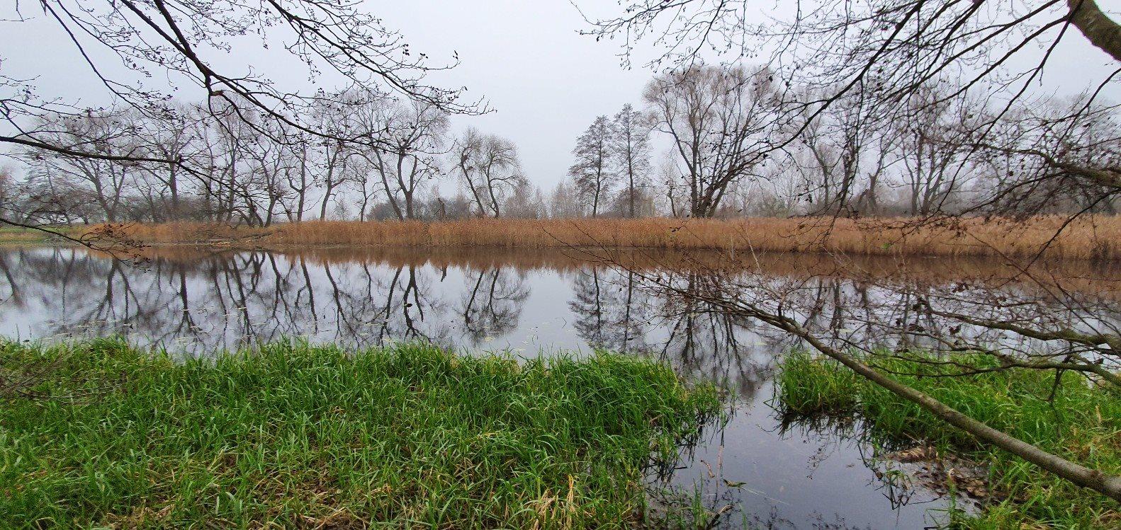 Działka budowlana na sprzedaż Konstacin-Jeziorna, Cieciszew  2900m2 Foto 2