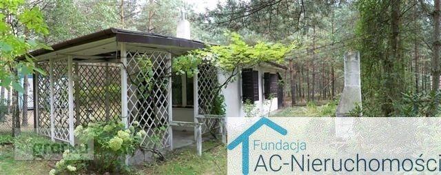 Działka leśna na sprzedaż Kraczynki  10000m2 Foto 1
