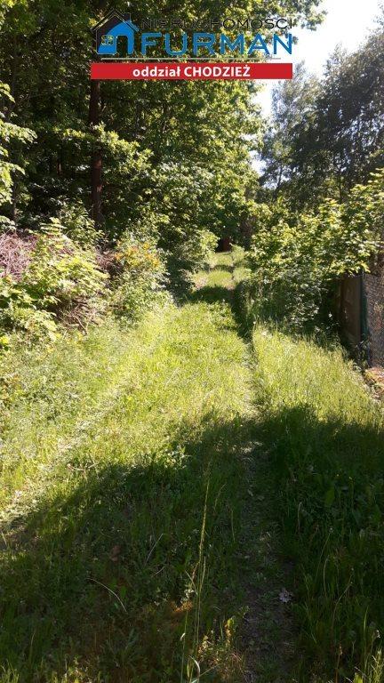 Działka leśna na sprzedaż Kaczory  2645m2 Foto 3