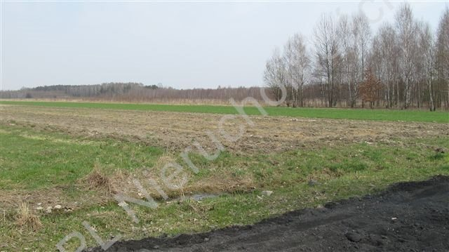 Działka rolna na sprzedaż Tyborów  1967m2 Foto 3