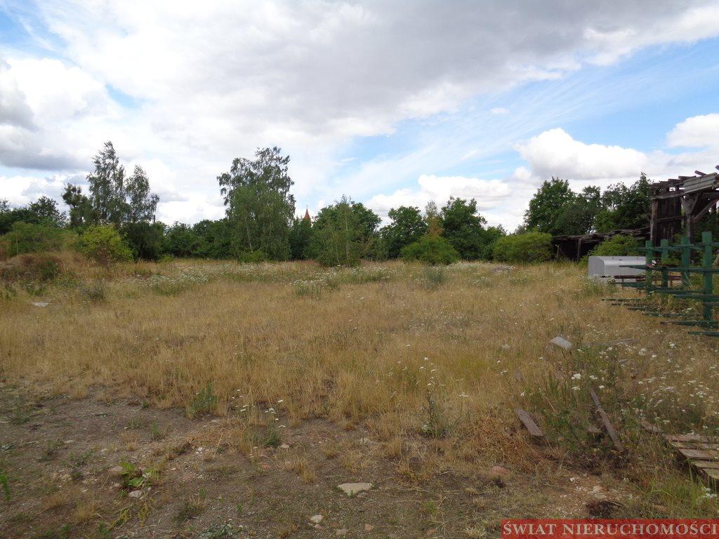 Lokal użytkowy na sprzedaż Prusice  6900m2 Foto 5