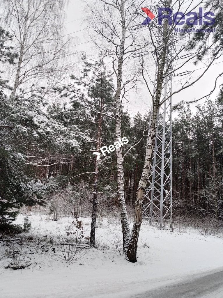 Działka leśna z prawem budowy na sprzedaż Warszawa, Wawer, Anin  3734m2 Foto 3