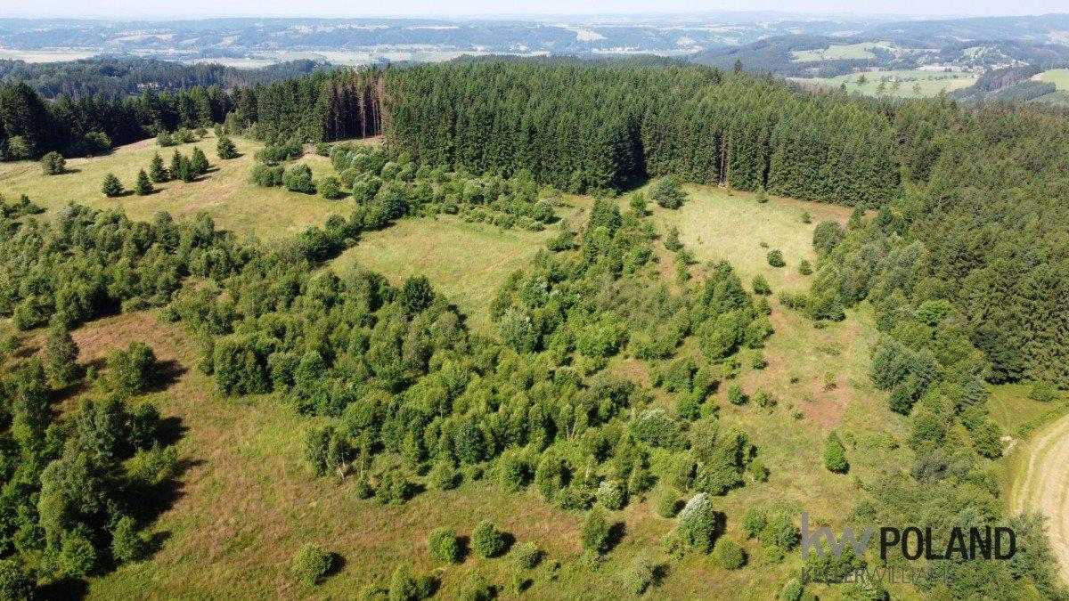 Działka rolna na sprzedaż Kudowa-Zdrój, Pstrążna  14309m2 Foto 3