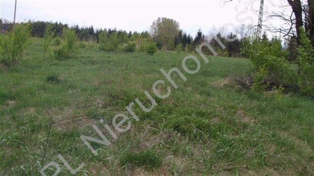 Działka rolna na sprzedaż Mszczonów  3600m2 Foto 2